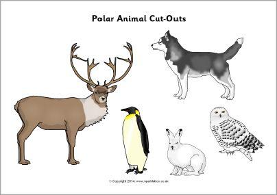 Polar animal cut-outs (SB10325) - SparkleBox
