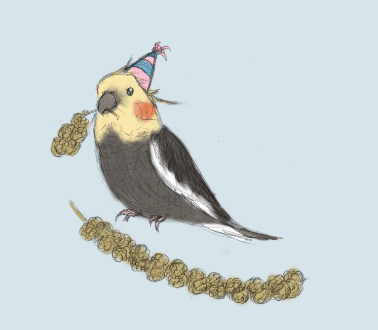 This One Is From Thegrish! Pepper+birthday Millet. Happy