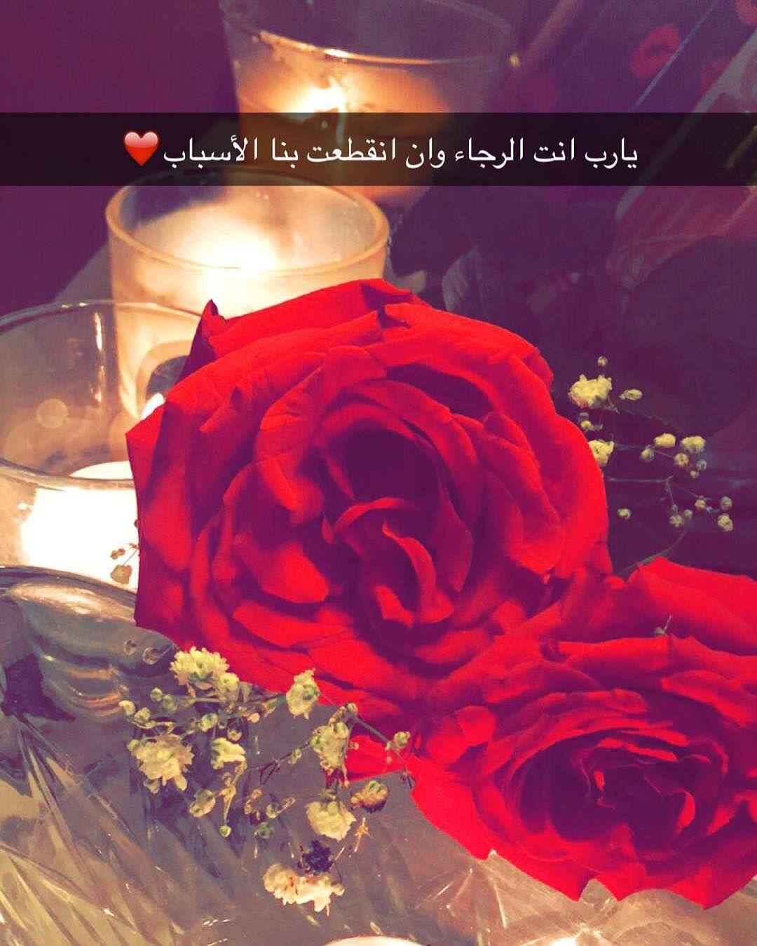 Instagram Photo By Roaa Abdalhaleem Apr 11 2016 At 10 49pm Utc Instagram Posts Instagram Instagram Photo