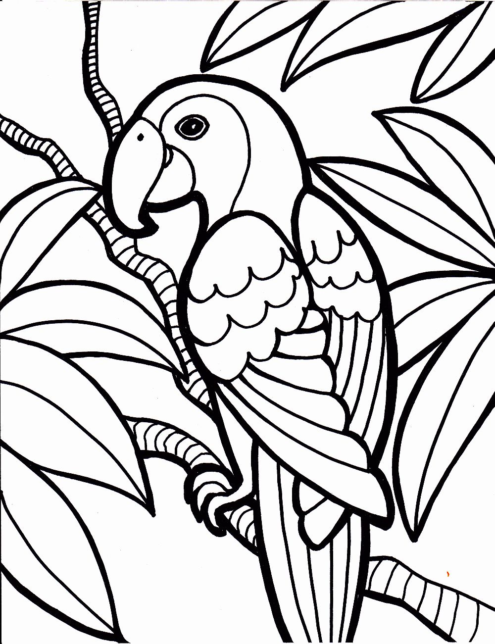 Coloring Bird Toys Bird Coloring Pages Jungle Coloring Pages
