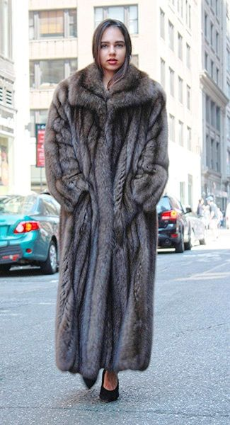 Sable Coats Jackets Marc Kaufman Furs, How Much Is A Sable Coat