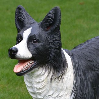 Life Size Border Collie Dog Statue Stands Over 15 Inches High