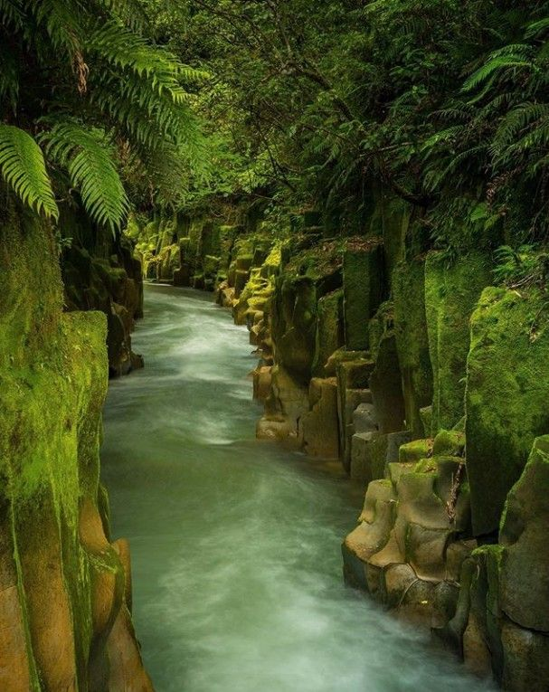 New Zealand | Earth pictures, World photo, Vacation trips