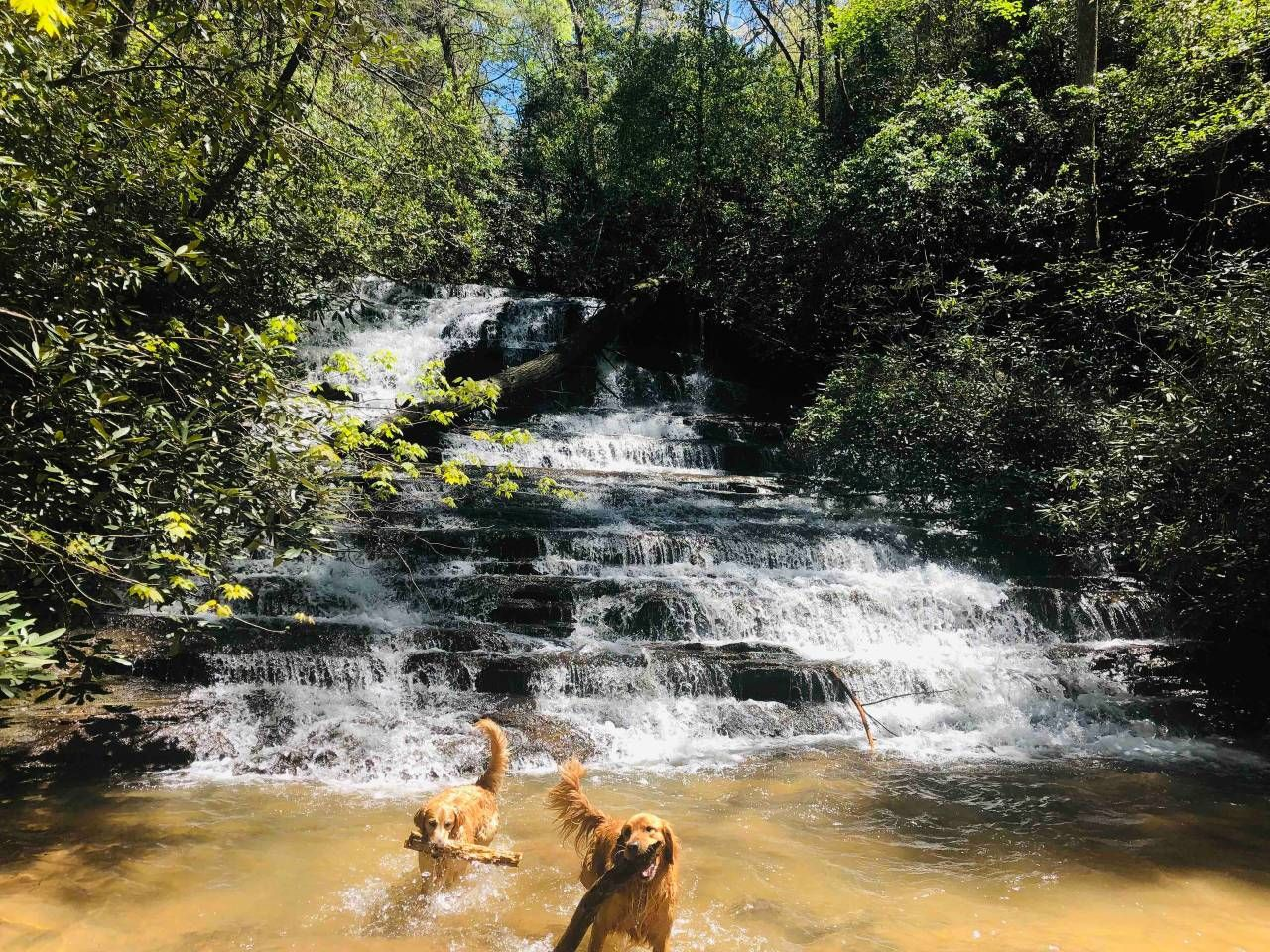 Waterfall Cabin Cabins For Rent In Oconee County Oconee County Waterfall Oconee
