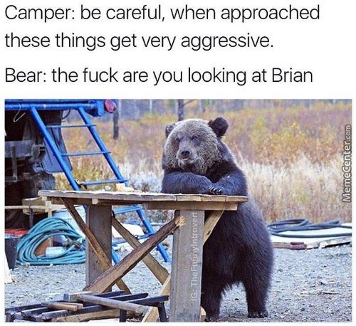 OMG I can't stop laughing at this one! #thatfunny #funny #memes #camping #campingmemes