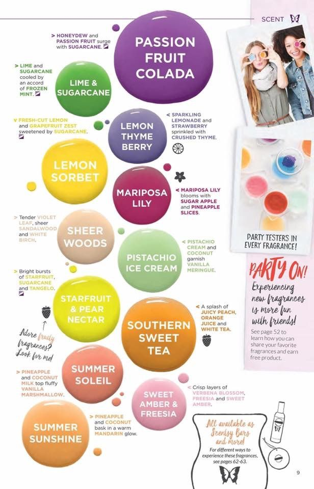 Pin by Colleen Barcellona on SCENTSY | Scentsy, Sweet tea, Diagram