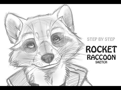 How To Draw Rocket Raccoon Guardians Of The Galaxy Youtube Art