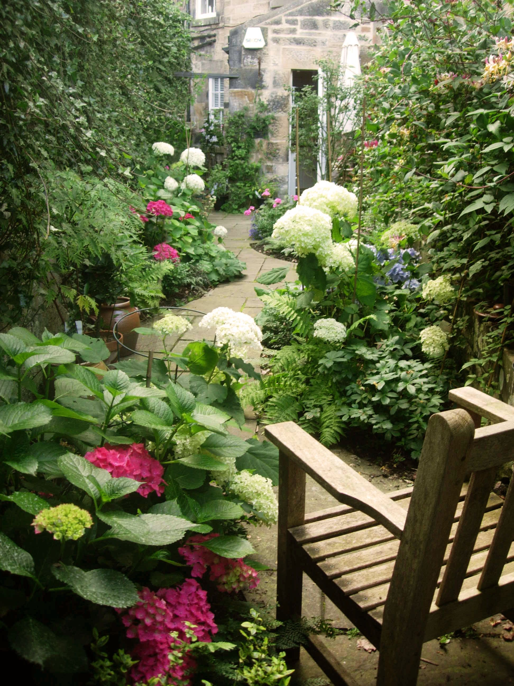 Motif Garden Design Edinburgh West End Linear Garden Garden Design Garden Design