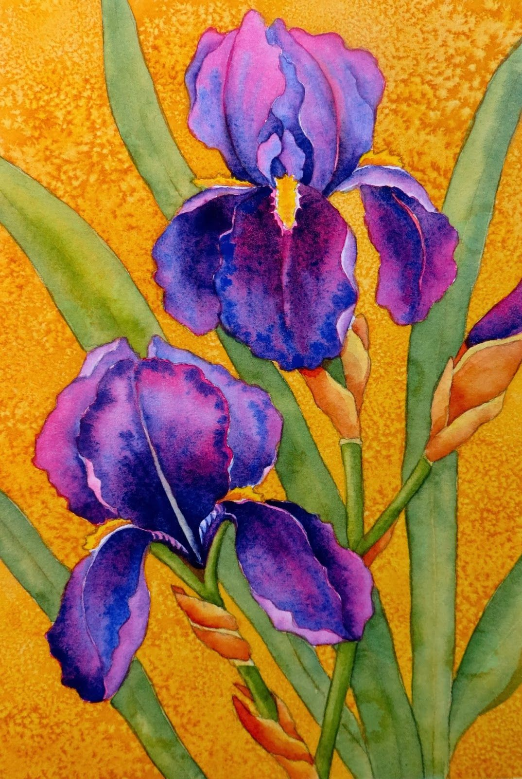 Watercolor Workshop Painting Bearded Irises Iris Painting