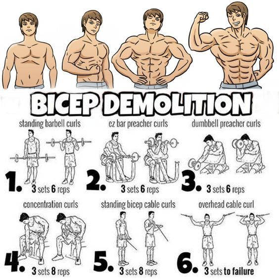 Top 5 Muscle Building Workouts You Should Be Doing Big Biceps Workout Biceps Workout Bicep Workout Gym