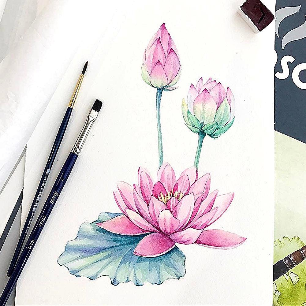 Lotus En 2020 Dessin Fleur De Lotus Lotus Aquarelle Dessin Fleur
