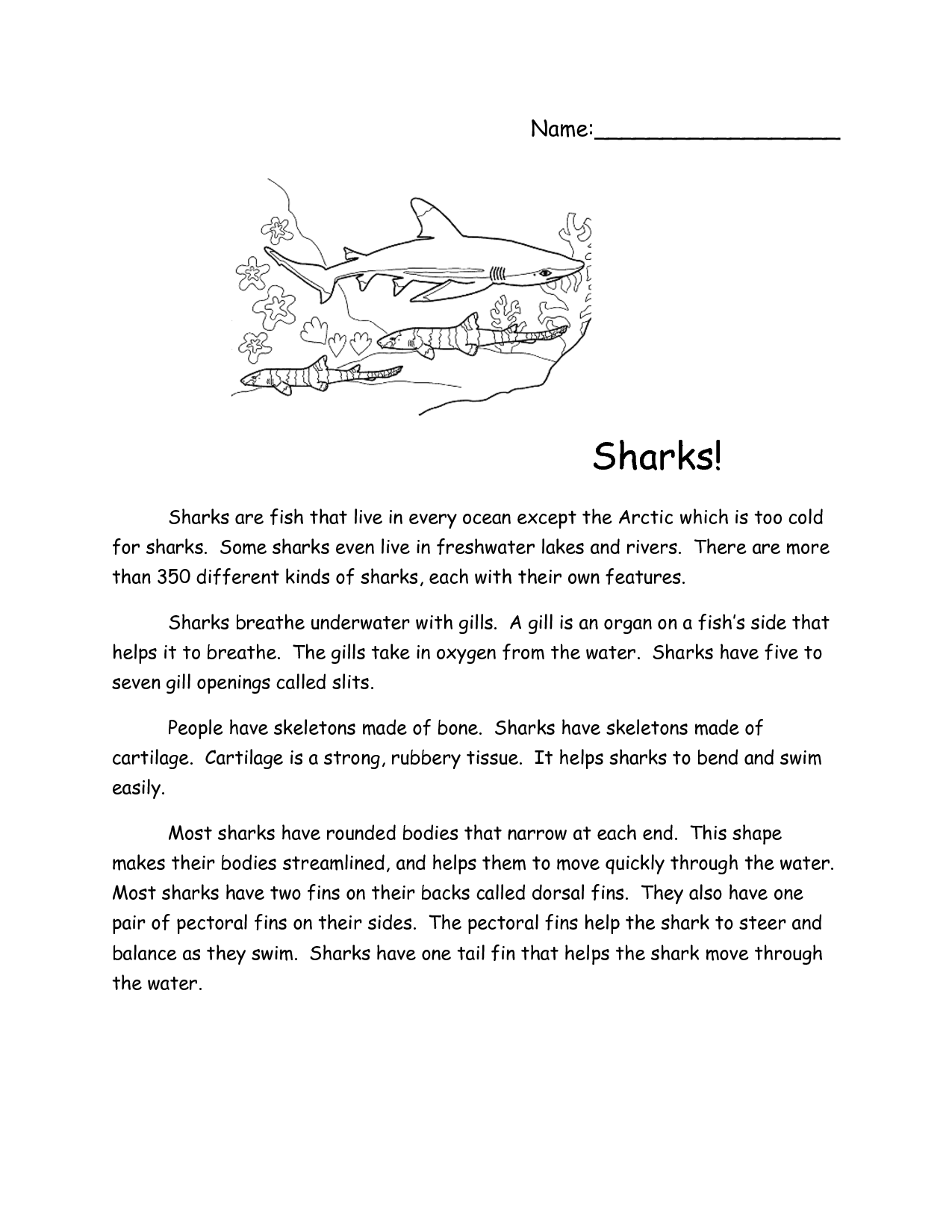 Sharks Reading Comprehension Reading Comprehension Worksheets Reading Comprehension Reading Comprehension Passages [ 1650 x 1275 Pixel ]