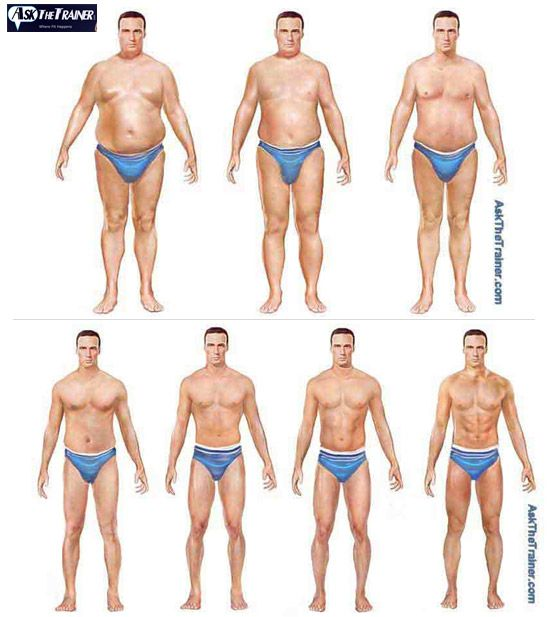 Body Fat Reference Chart | Exercise | Pinterest | Exercises
