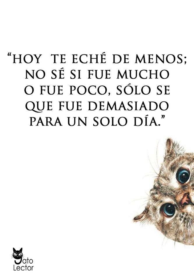 Te Echo De Menos At Antoniogr15 Frases Bonitas Frases