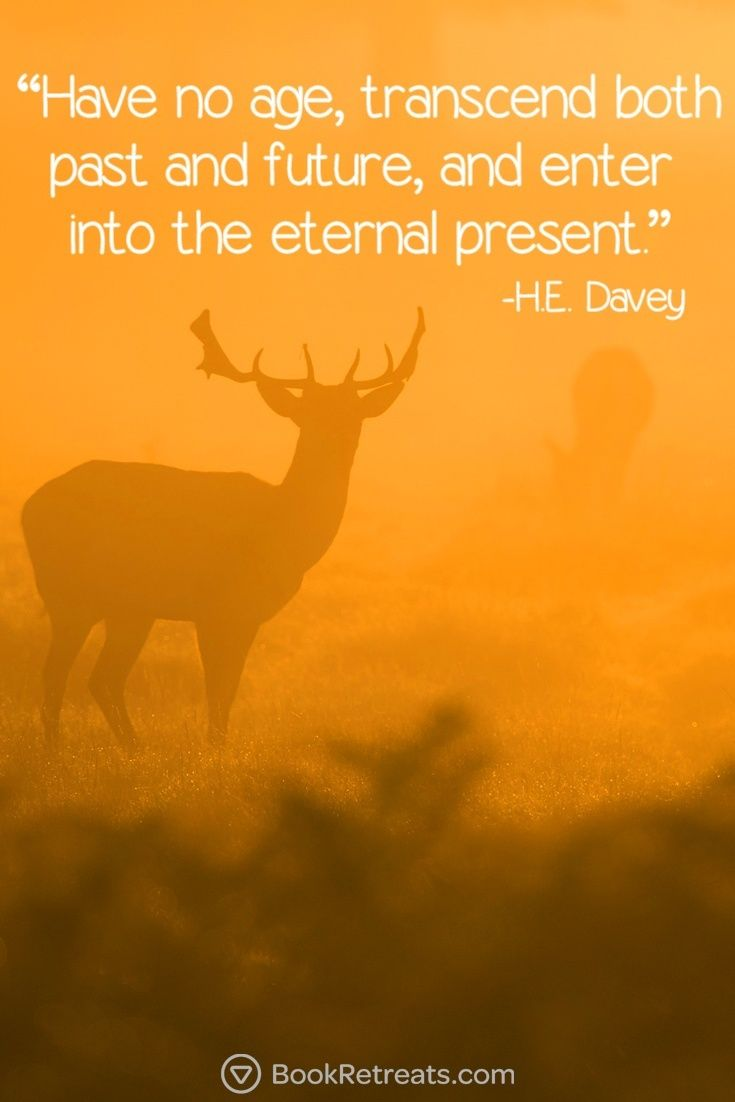 Meditation Quotes 101 Meditation Quotes That Will Connect You Again  Pinterest .