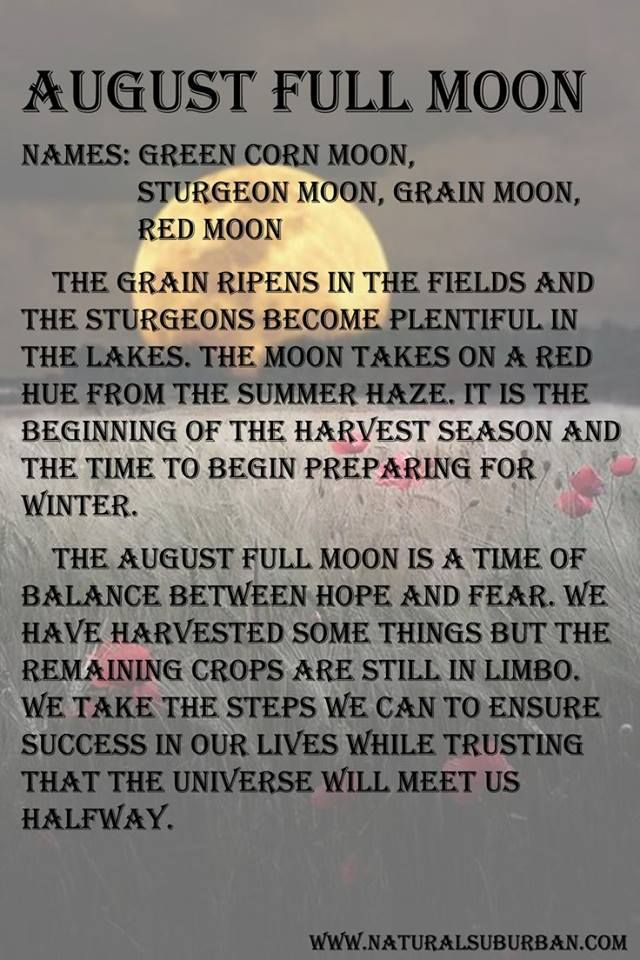 August Full Moon Falls On The 29th This Year One Day After Rosies