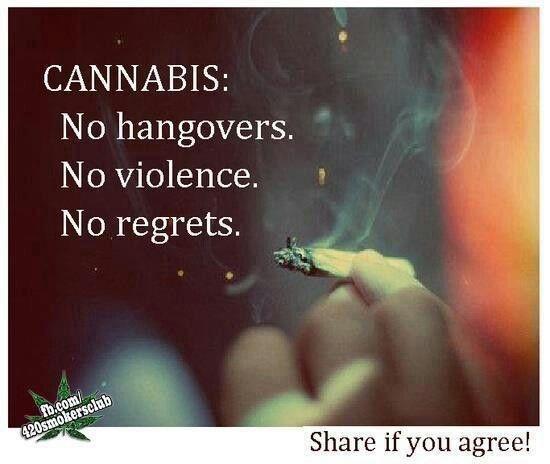 <3 cannabis- no hangover no violence no regrets
