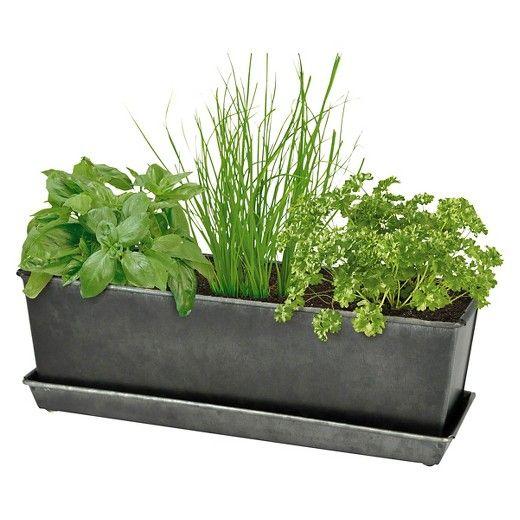 Outdoor Herb Garden Kit.Indoor Outdoor Herb Grow Kit Smith Hawken Garden