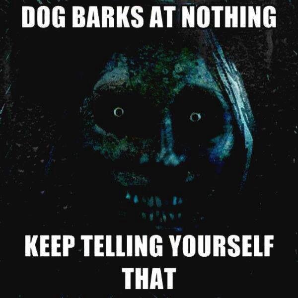 Dogs Bark At Nothing Dog Barking At Nothing Dog Barking Halloween Quotes