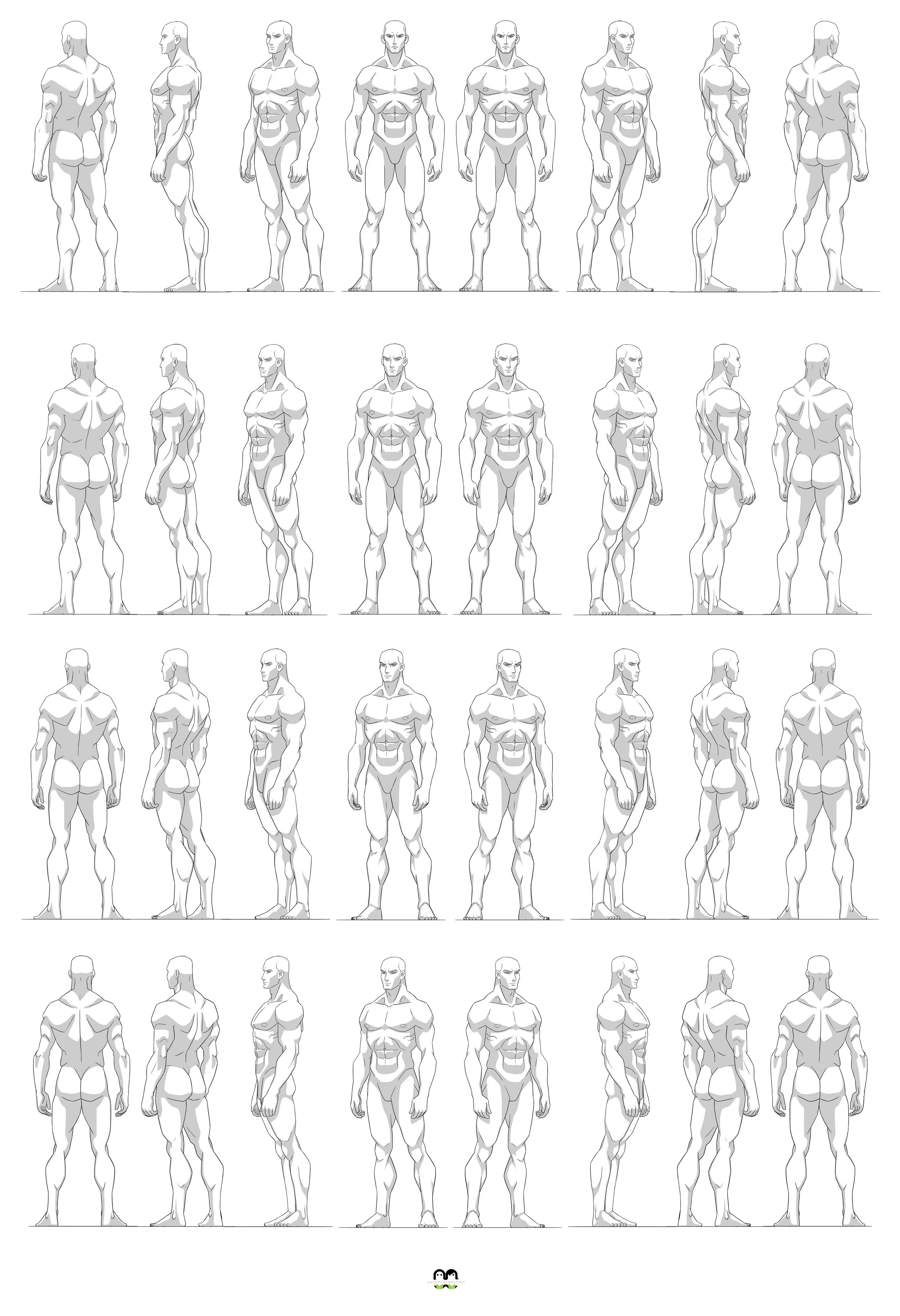 Pin By Kate Lay On Human Anatomy In