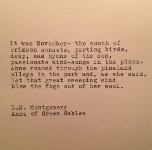 It was November—the month of crimson sunsets, parting birds, deep, sad hymns of the sea, passionate wind-songs in the pines. Anne roamed through the pineland alleys in the park and, as she said, let that great sweeping wind blow the fogs out of her...