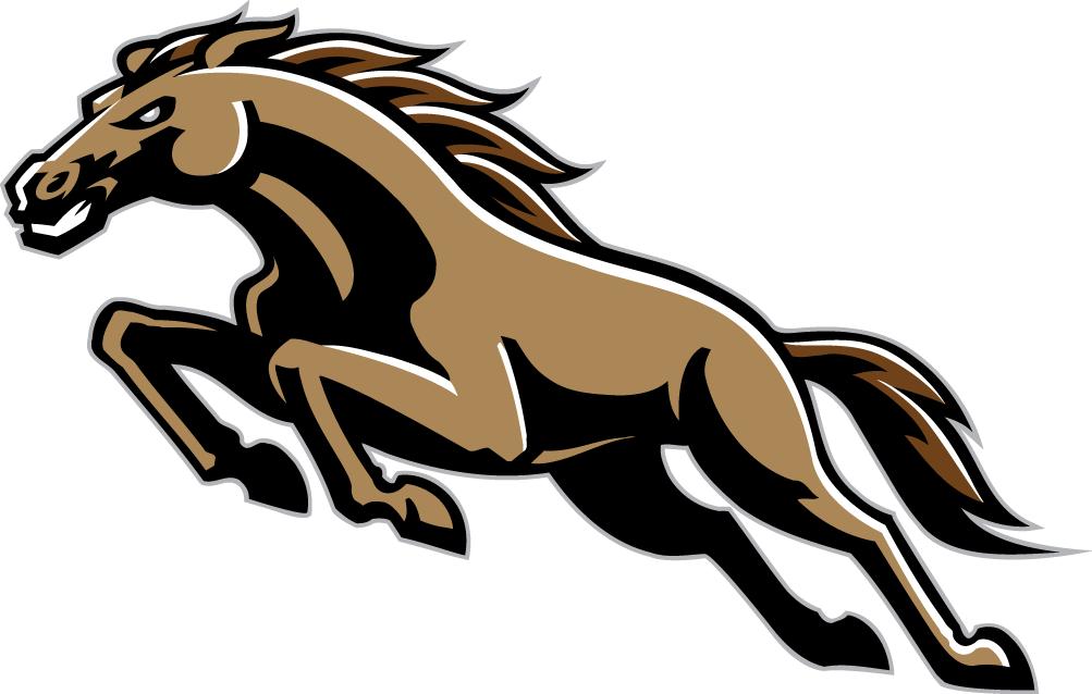 Western Michigan Broncos Cavalos Desenhos
