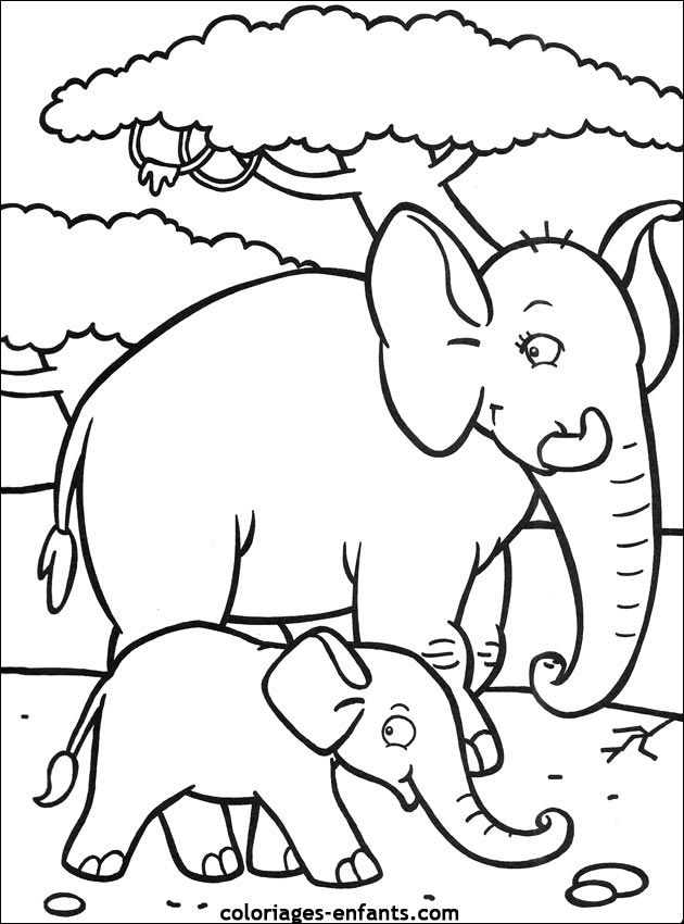 Coloriages Elephants Coloriage Elephant Coloriage Coloriage Animaux