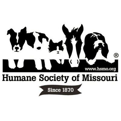 Humane Society Of Mo Humane Society Pet Resort Pet Safe