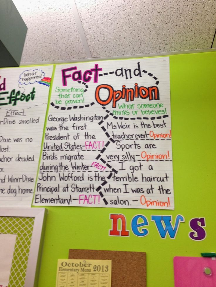 [+] Fact And Opinion Anchor Chart