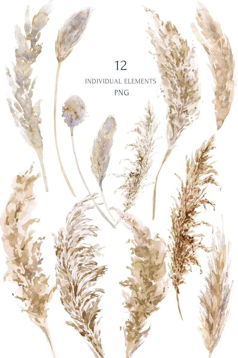 Dry Grass Clipart Dead - Dry Plants Png PNG Image | Transparent PNG Free  Download on SeekPNG