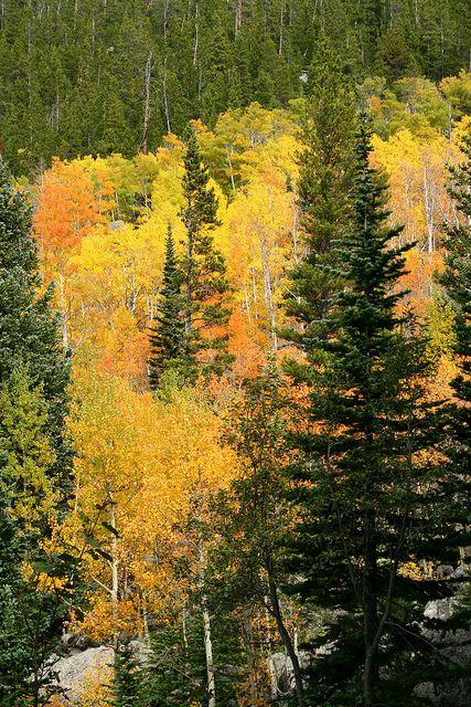 Rocky Mountain National Park, Colorado; photo by .Brett Nickeson