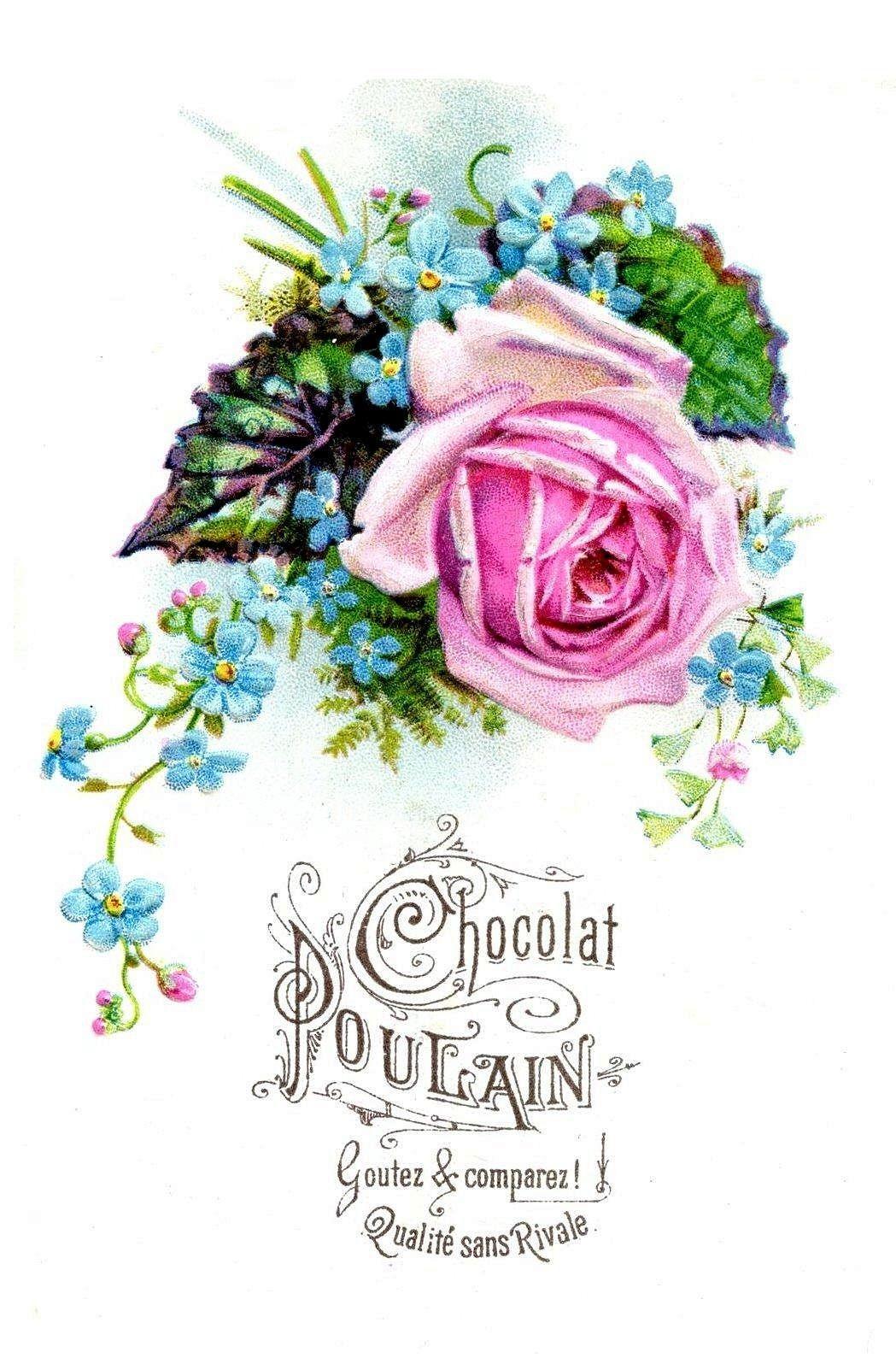 Chocolat Poulain  roses