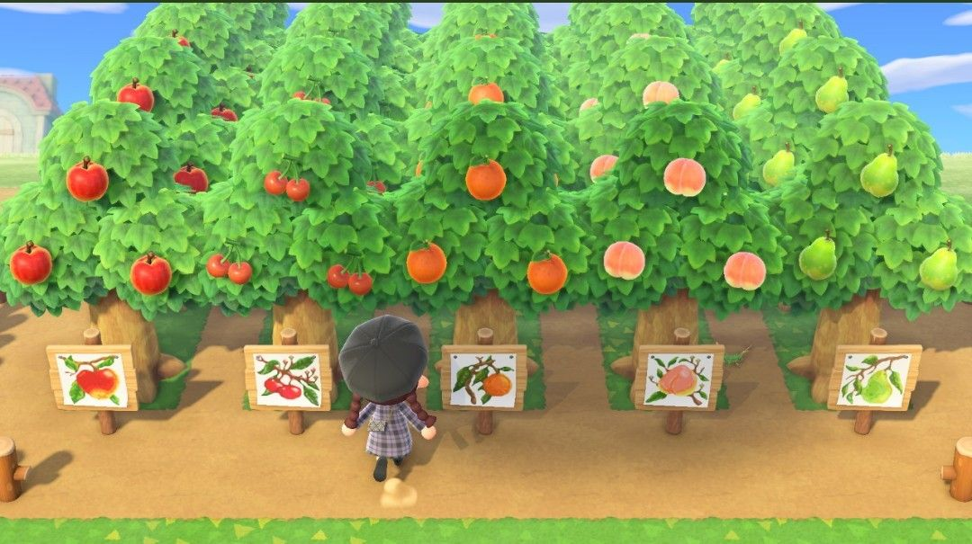 This Is For The People That Were Asking How The Spacing Was On My Orchard Layout I Dug The Holes So It S Ea Animal Crossing Space Animals Animal Crossing Game