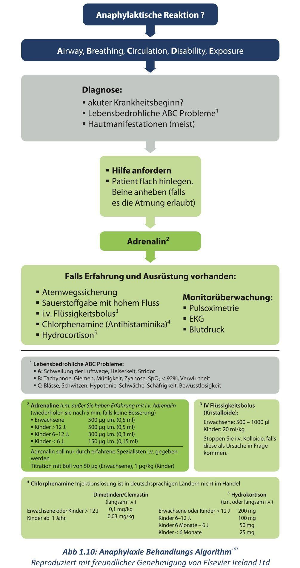 Auszug von Leitlinien Kompakt German Resucitation Council 2015 ...