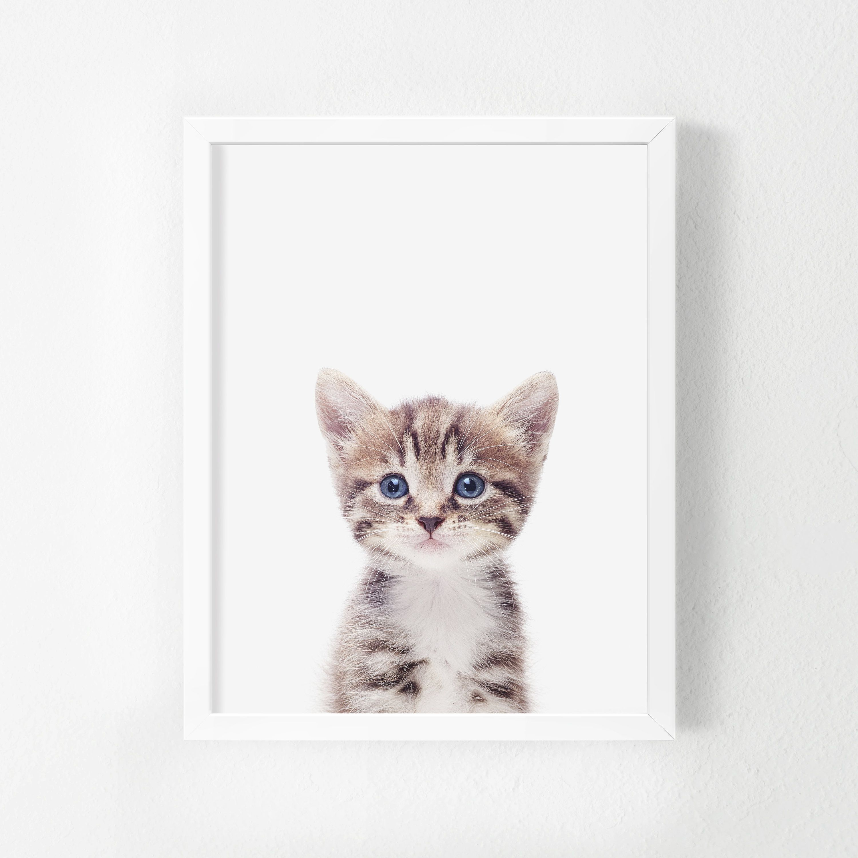 Kitten Printable Art Baby Animal Nursery Decor Wall Art Nursery Nursery Prints Kitten Print Animal Poster Digital Instant Download Baby Animal Nursery Animal Posters Etsy Wall Art