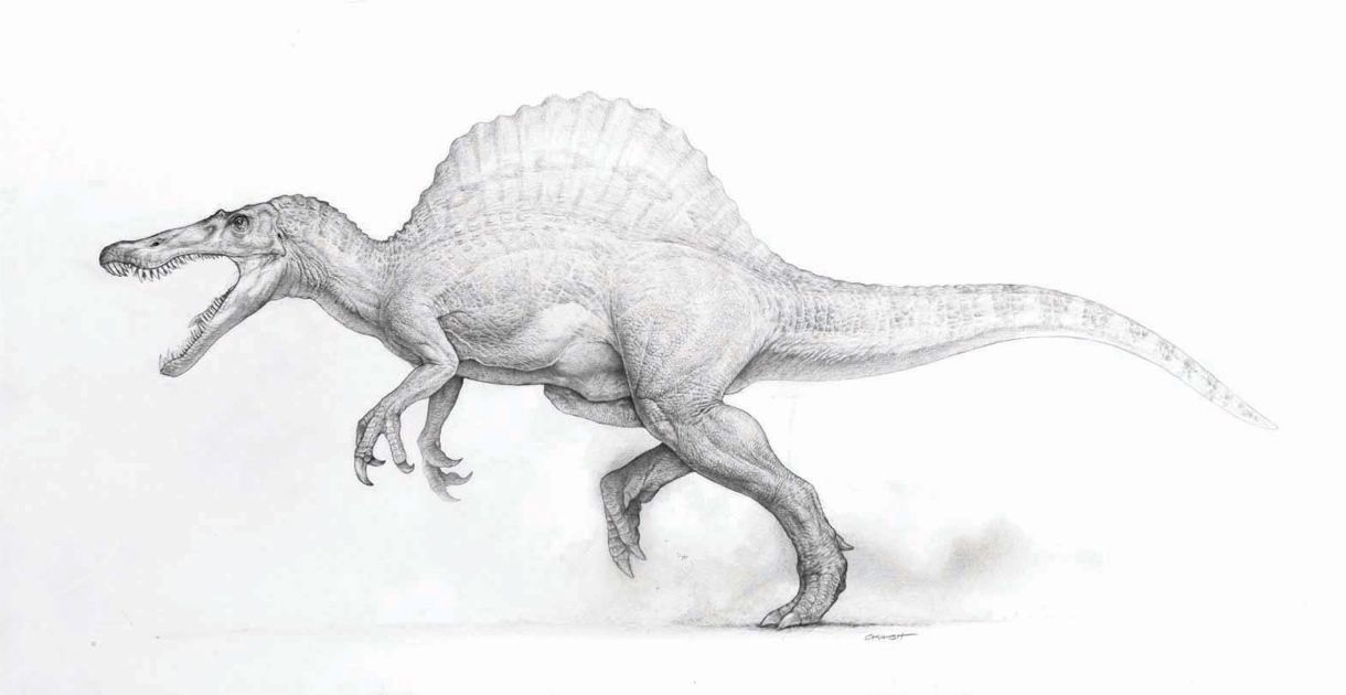 Image result for concept sketch dinosaur