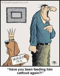 the most funny cartoons - Google Search