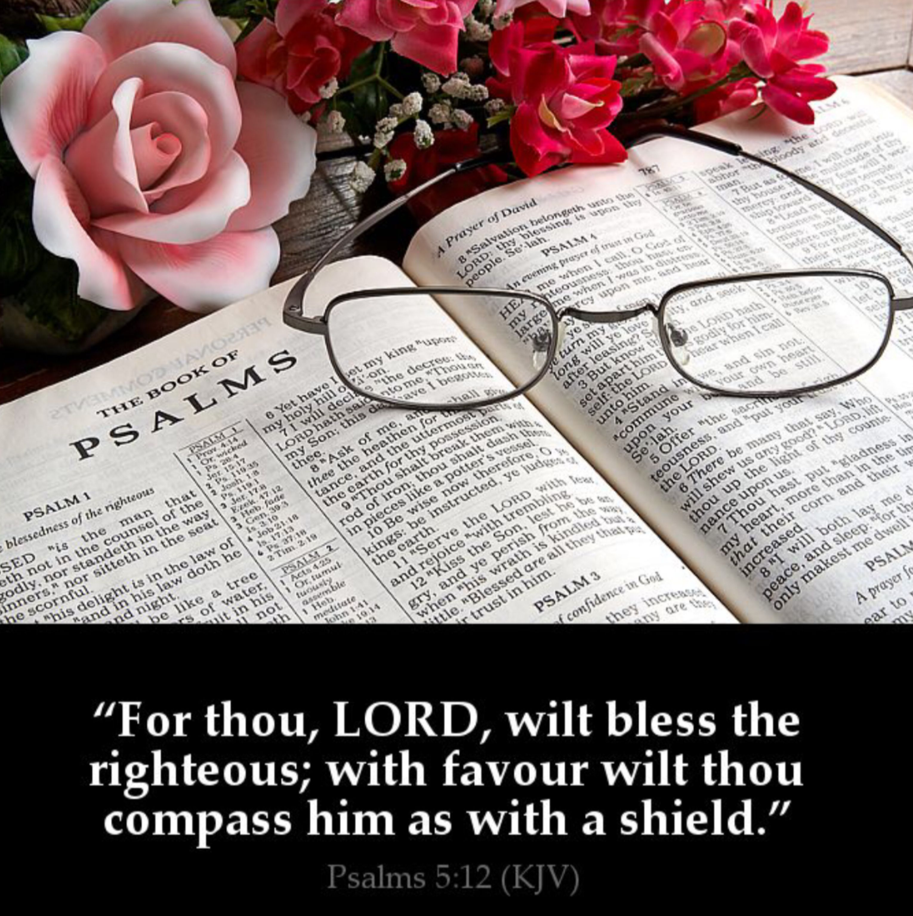 Pin by HAC on Bible Picture Verses | Pinterest | Bible pictures ...