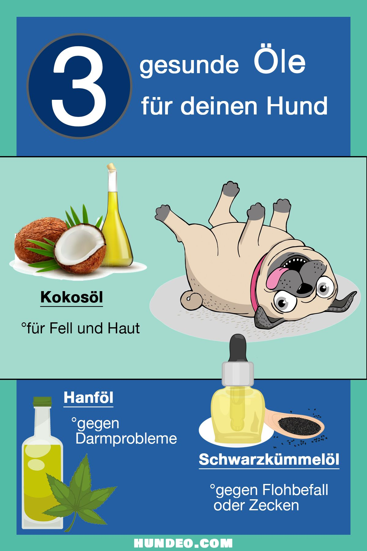 7 gesunde Öle für dein Hund (Die du