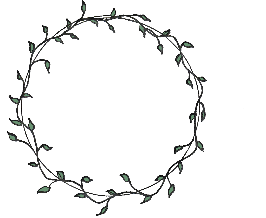Vine Circle Vine Drawing Flower Circle Flower Drawing Design