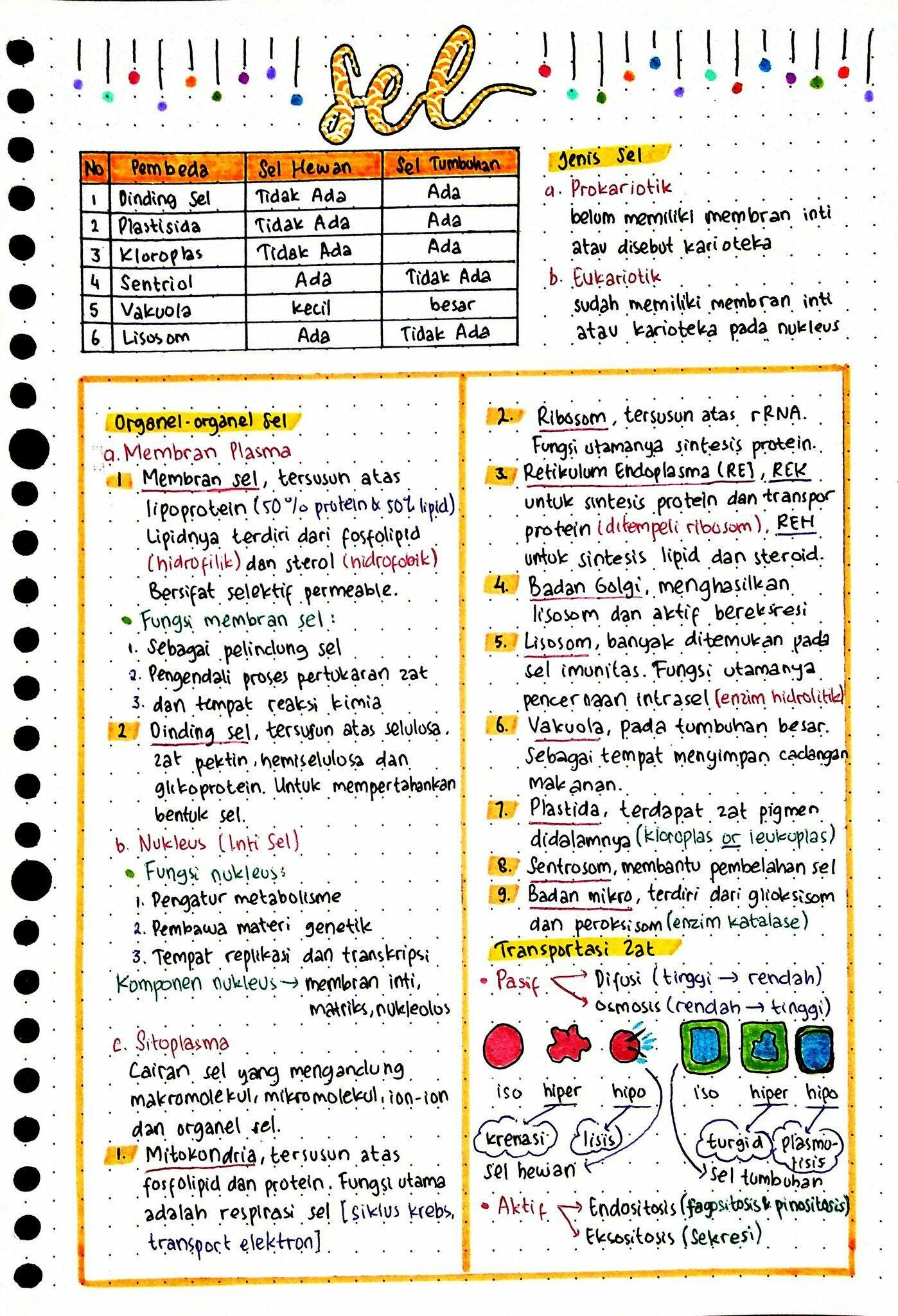 Pin Di Lettering Ideas