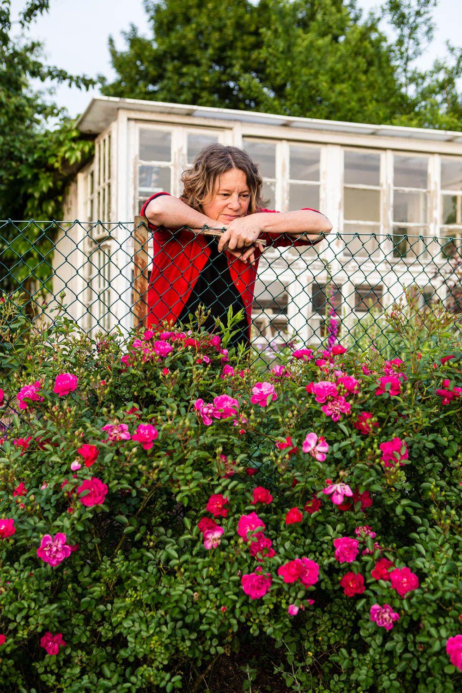 Photo of Gartengestaltung – Beispiele für naturnahe und insektenfreundliche Gärten