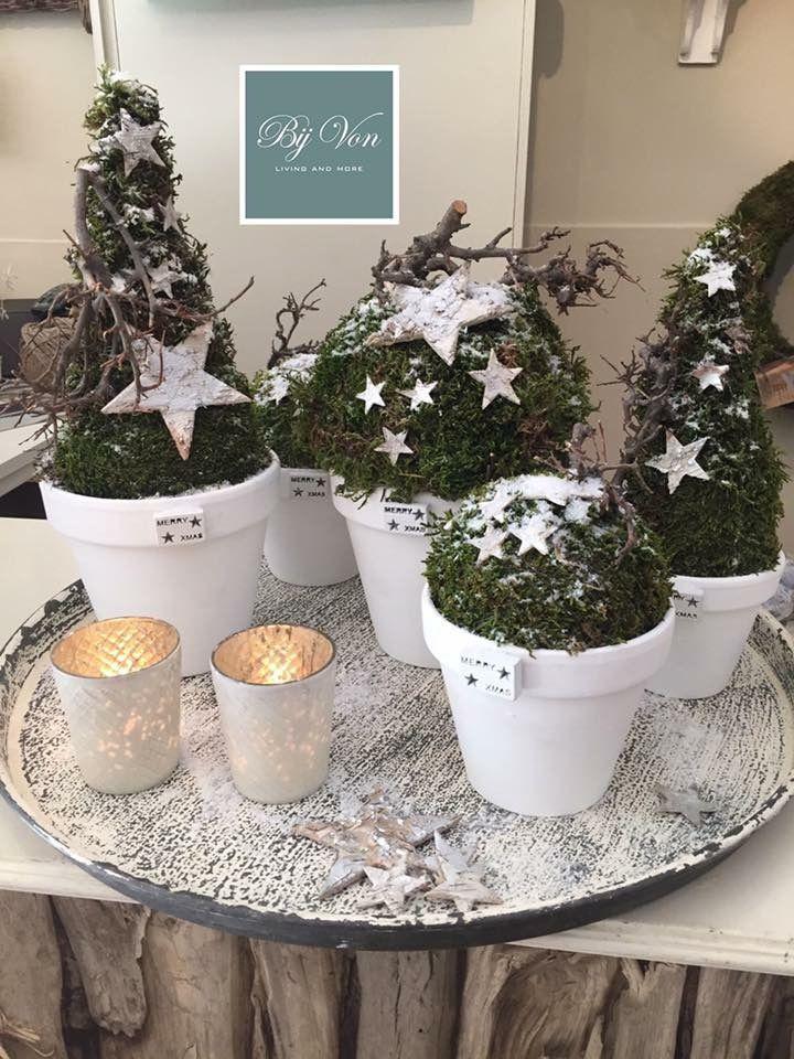 Kerst mos takken sterren en terracotta bloempotten wit verven kerststuk decoraties - Decoratie new england ...