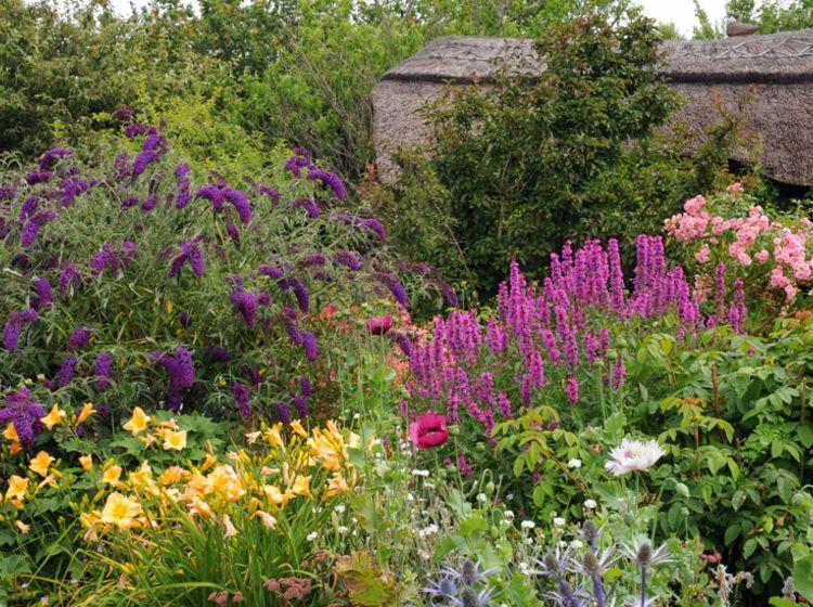 Rabatten pflegeleichte ziergr nfl che garten pflanzen for Pflanzengestaltung garten