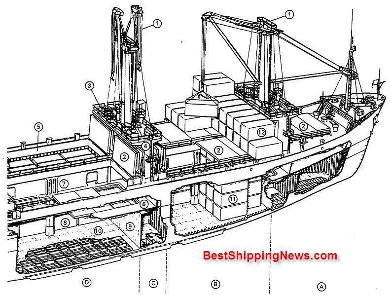 A B D Hatches No 1 No 2 No3 C Cofferdam 1 Cargo Gear
