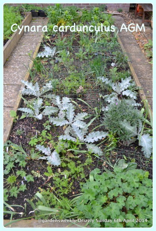 Garden Design Course Hampshire Garden Design Design Course Gardening 101