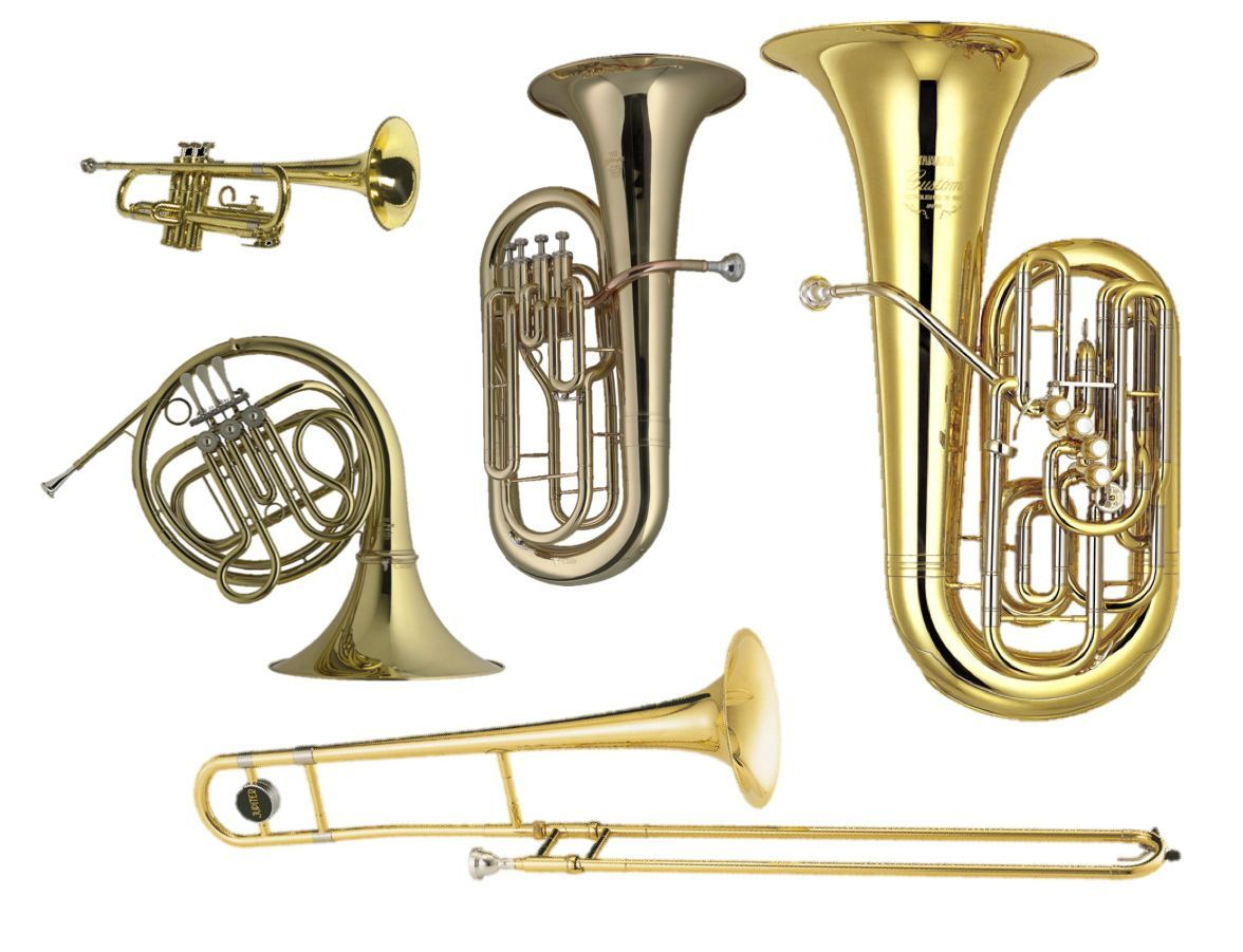 tuba, baritone, trumpet, french horn, and trombone. the brass   band