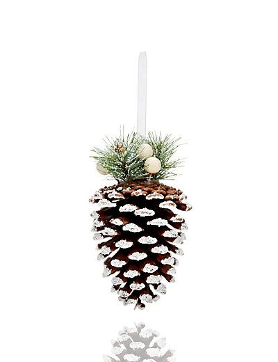 Frosted Pine Cone Decoration M S Pine Cone Decorations Pinecone Ornaments Pine Cones
