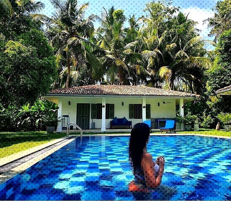 An amazing picture of Srilanka ➖➖➖➖➖➖➖➖➖➖➖➖➖➖ ➢ Follow » @srilanka_l