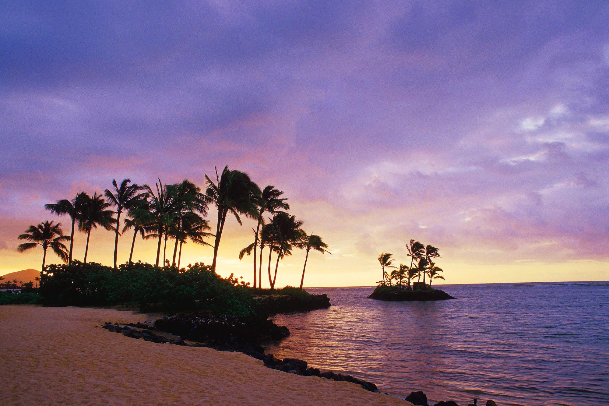 The Inspiring Wallpaper Of The Waialae Beach Honolulu Hawaii Beach Wallpapers Sky Palms Hawaii Oahu Hawaii Beaches Sunset Beach Hawaii Oahu Beaches